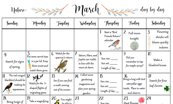 Free March Nature Day by Day Calendar