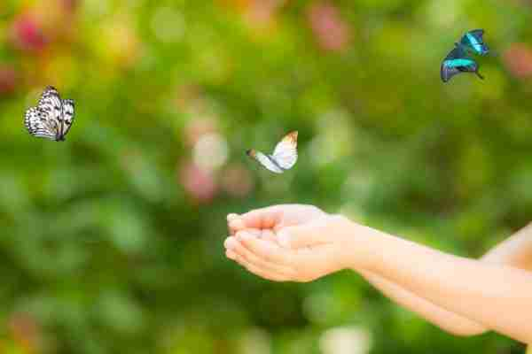 Choosing Joy Homschooling Mom